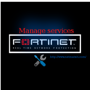 best Fortinet Firewall Standard Management Service in India
